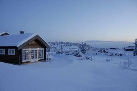 Hytte, Søndre Fjellstølen i Valdres - Reinli