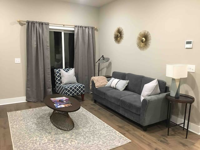 Stylish Midtown Town home with Rooftop Patio