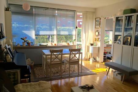 Small one room apartment - Appartamento