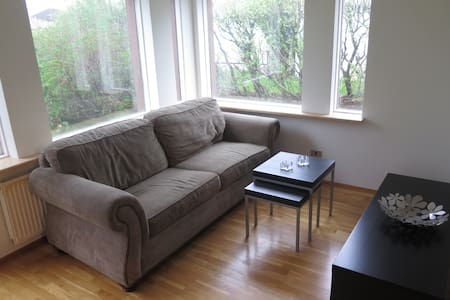 Cozy apartment with garden and free parking - Reykjavík