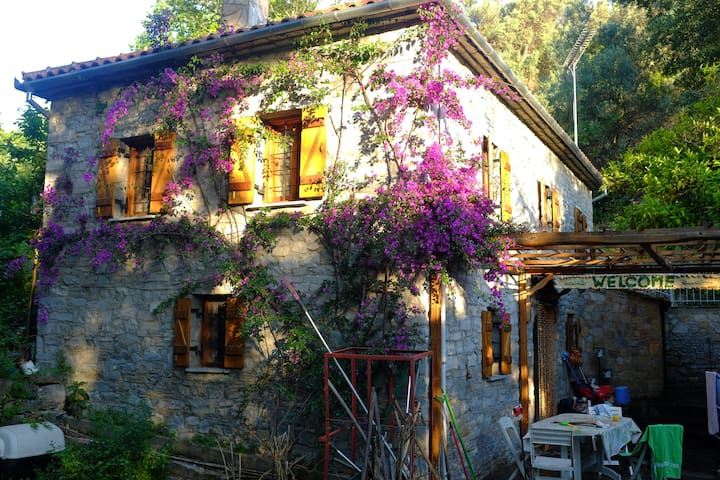 Beautiful stone house amongst a canopy of trees