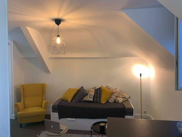 Appartement cosy dans l'hypercentre