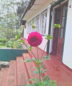 Knuckelles Heritage in the sri lanka wow nice ever - Gomara - Bungalow