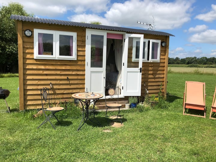 Lazy Goose Shepherd's Hut, Ely