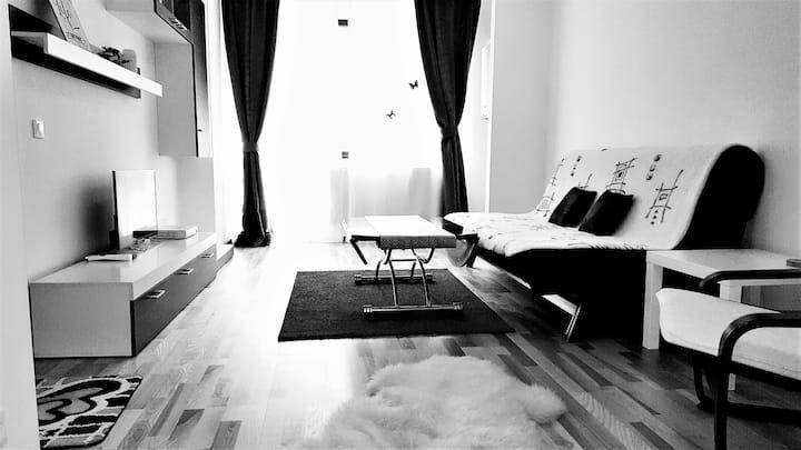 Prahova Valley - Apartement Sinaia