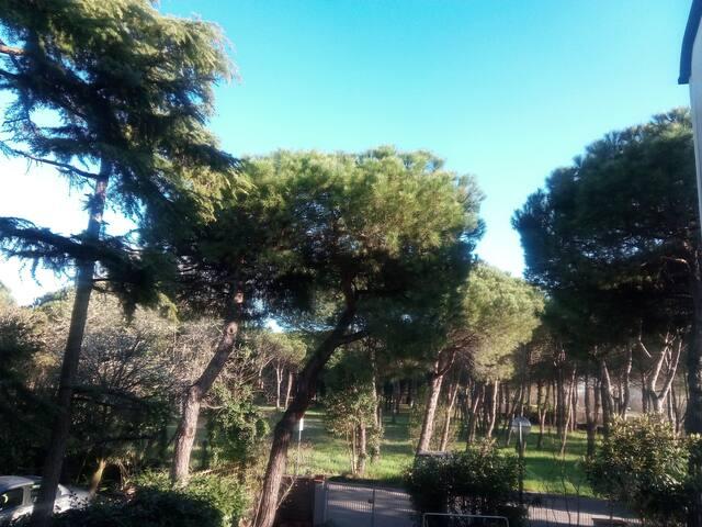 Alloggio nella pineta di Milano Marittima - Cervia - Apartment