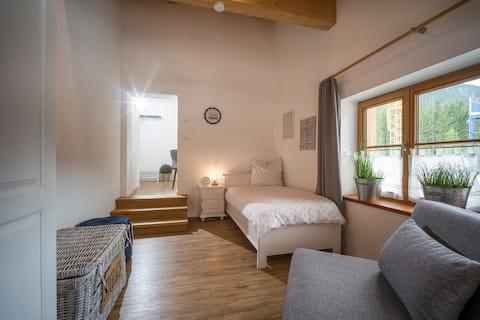 "1-pokojový byt ""Guffert"", kuchyně, balvan"