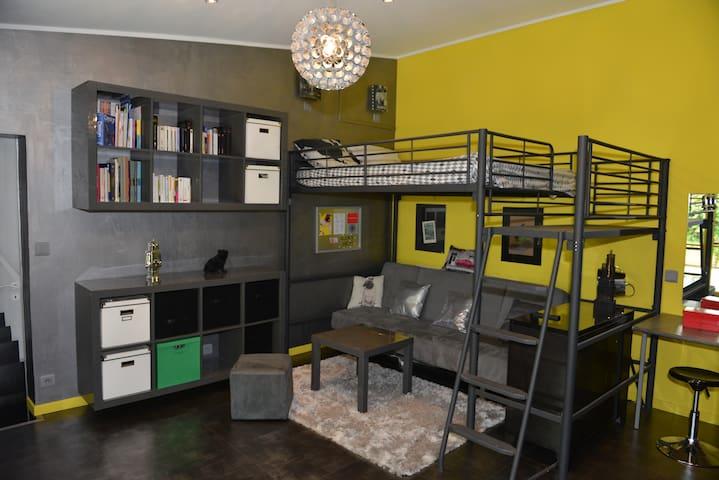 Grande chambre comprenant une mezzanine de 140, un canapé lit de 140, un placard et un espace permettant de poser au sol, 3  malelas d'appoint.