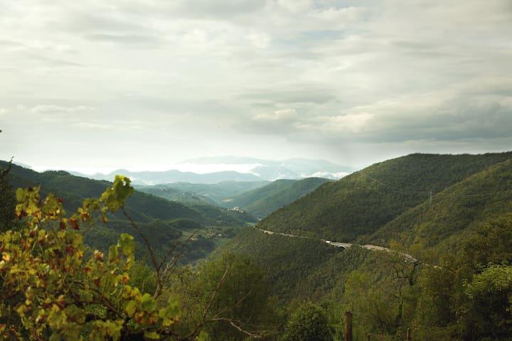 TORRE AL COLLE