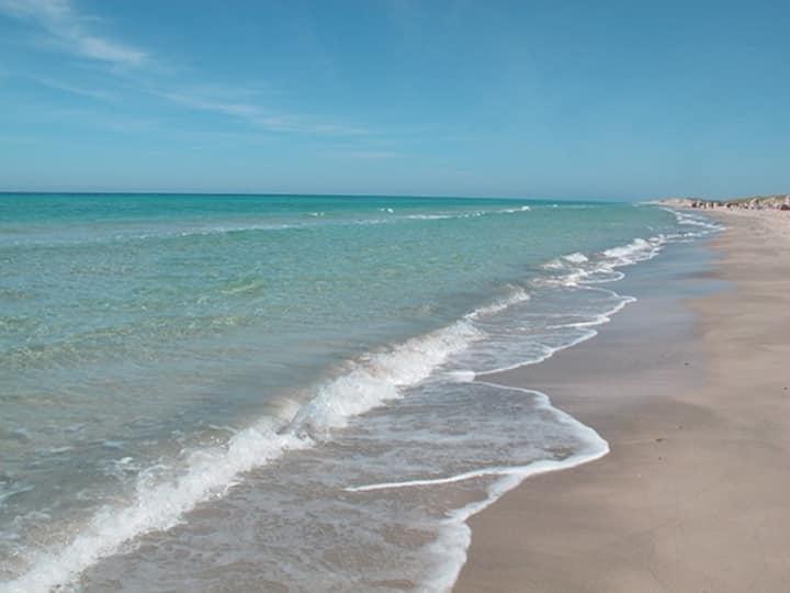 Appart. S2  calme au bord de la plus belle plage