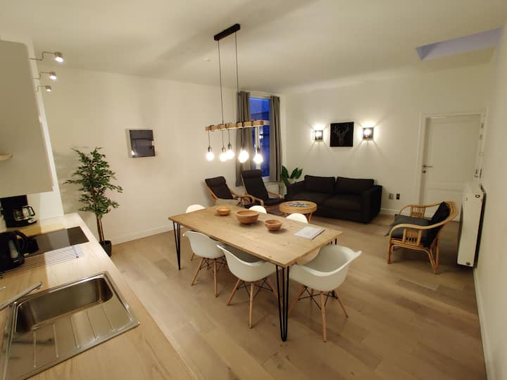 Newly Renovated Cosy Apartment in City Center
