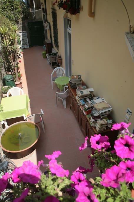 Resede/Garden