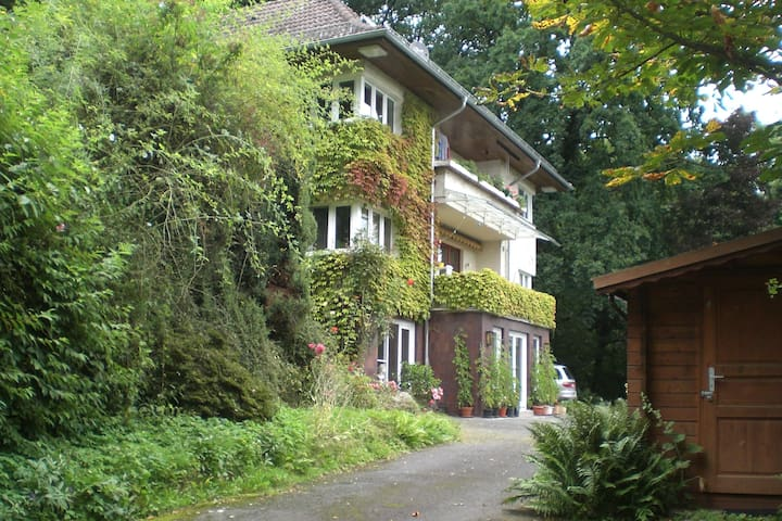 2 room in beautiful forest house - Baunatal - Pis