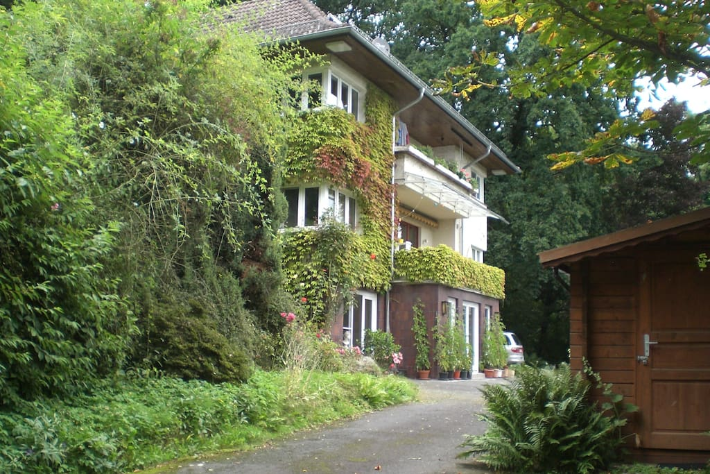 2-Zimmer-Wohnung befindet sich im Erdgeschoss