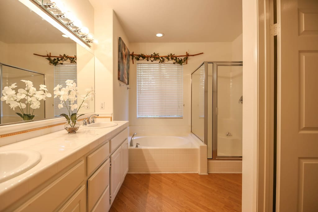 Master bath with tub, shower, dual sink