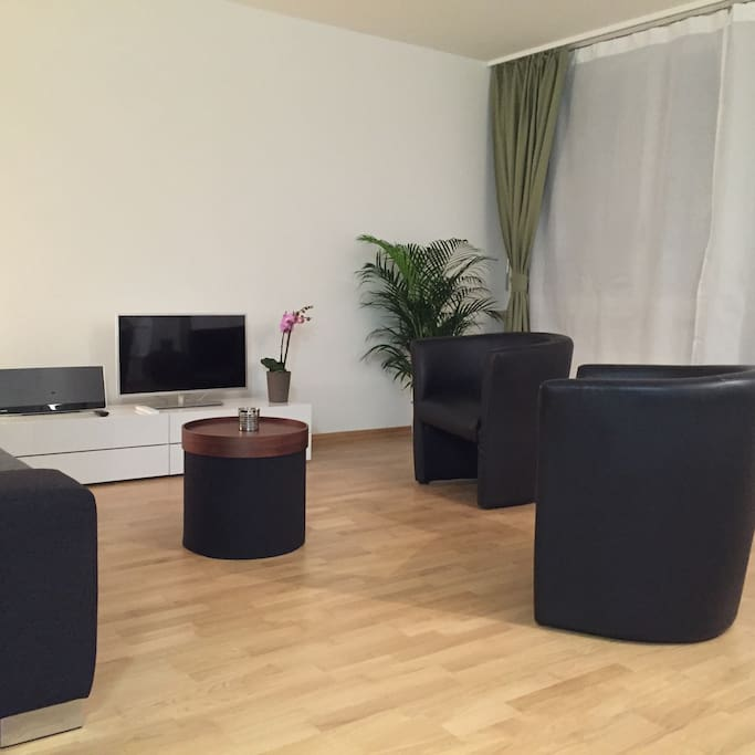 Living Room Wohnzimmer Salon