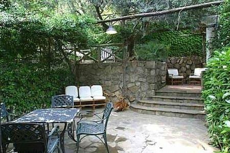 Villa Rita - Ficus - Nerano