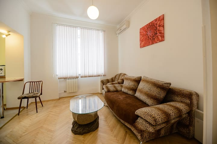 2-room apartment on 9 Tryohsviatitelskaya st.
