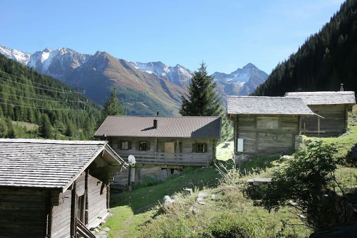 Chalet independiente en las montañas donde las vacas caminan alrededor dela casa