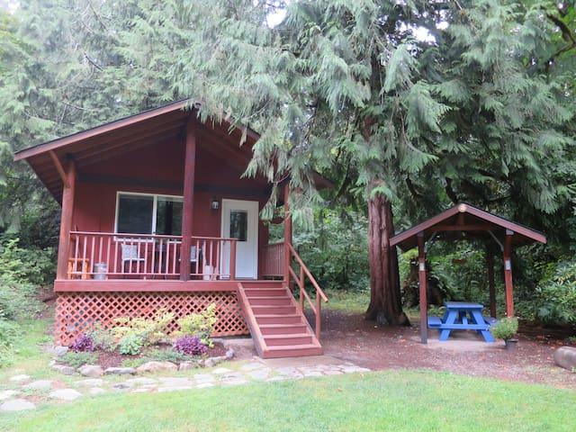 Cozy Creek-side Cabin.