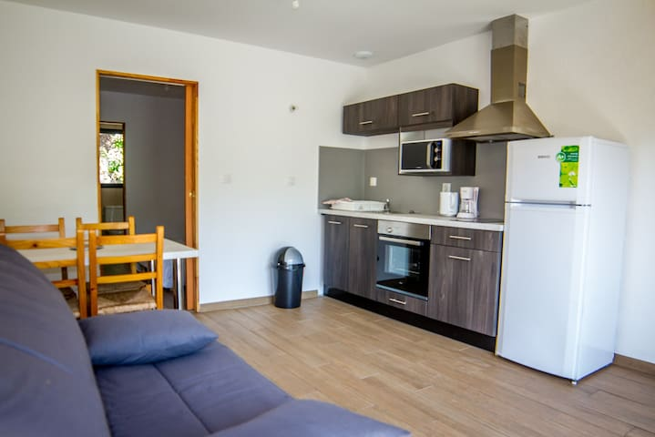 Le Vieux Moulin appart 2 - Béost - Apartment