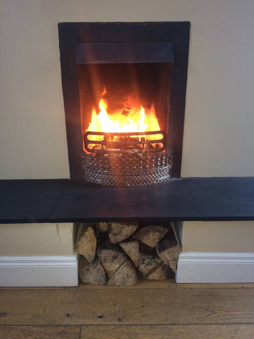 Beautiful raised open fire for multi fuel burning