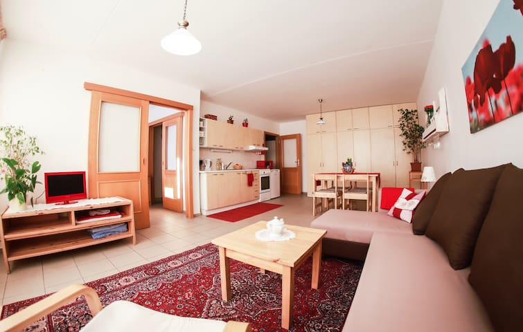 Peaceful apartment in Karlín