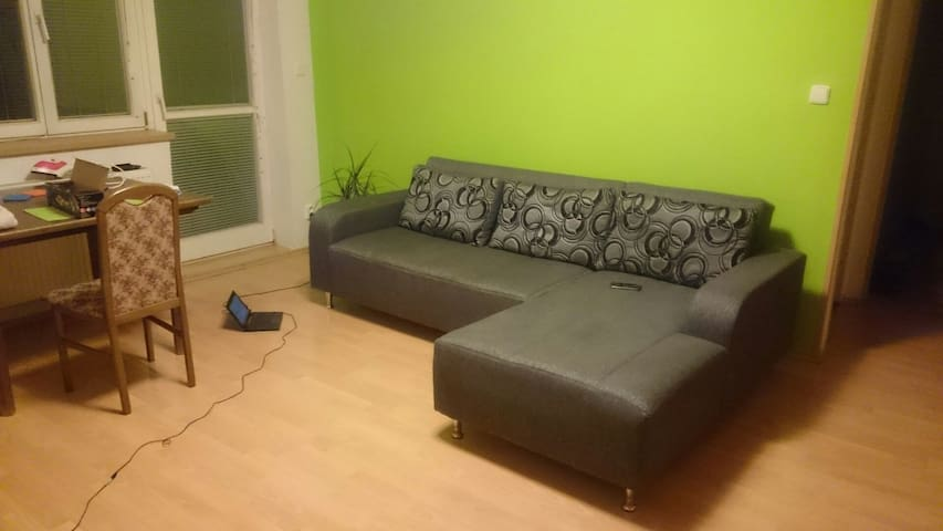 Simple central couch - Brno - Apartment