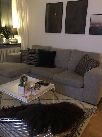 Cosy apartment close to City Center & Tele2/Globen