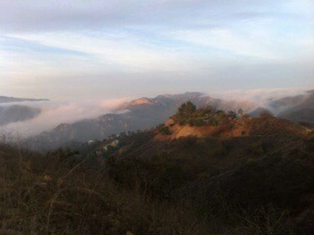 Beauty of fog