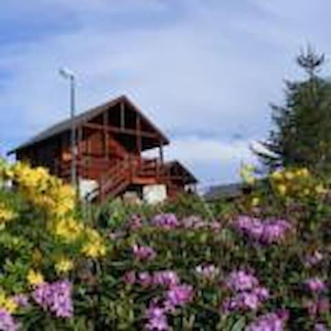 Hıdırnebi Yaylakent (Small House 6) - Akçaabat - Bungalow