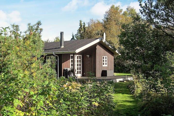 5 Personen Ferienhaus in Aabybro