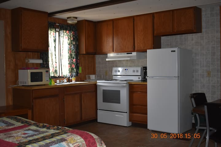 Denali National Park area, 4 beds, bath, kitchen