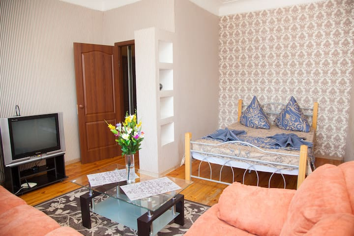 Semi-luxury Apartment on Soborniy 179