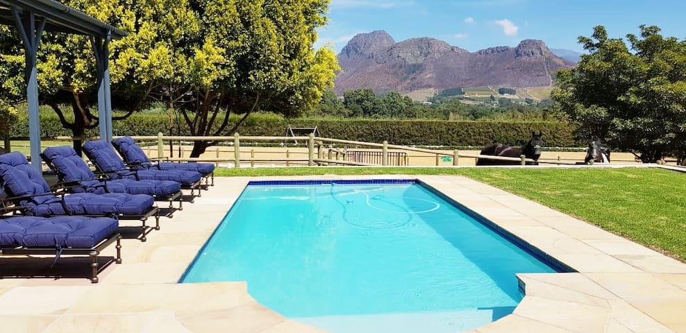Franschhoek Villa Overlooking the Winelands