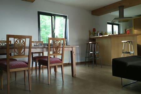Petite maison à 10 minutes de Bâle - Wentzwiller - Hus