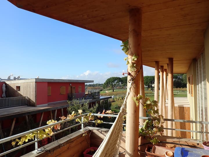 sunny ecological flat