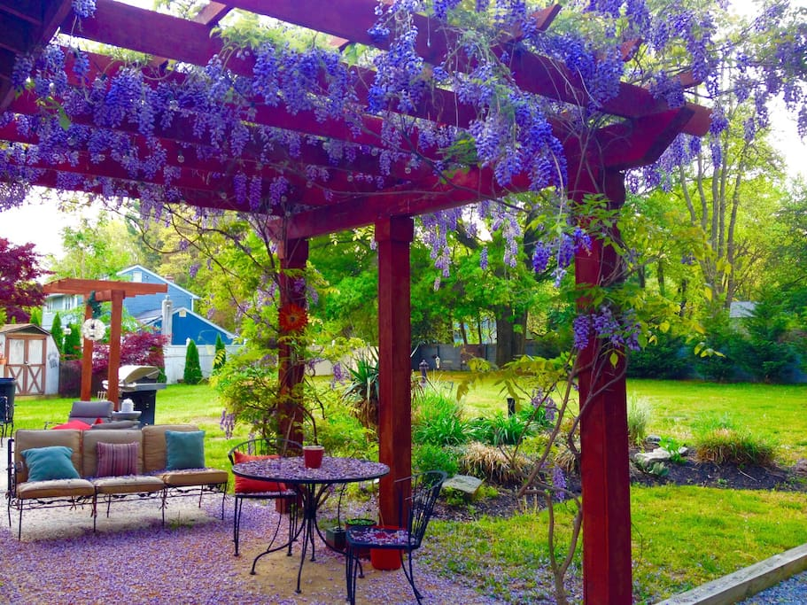 Wisteria Covered Patio - Grill & Yard
