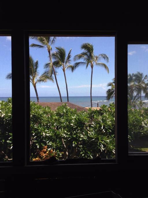 Breezy ocean view