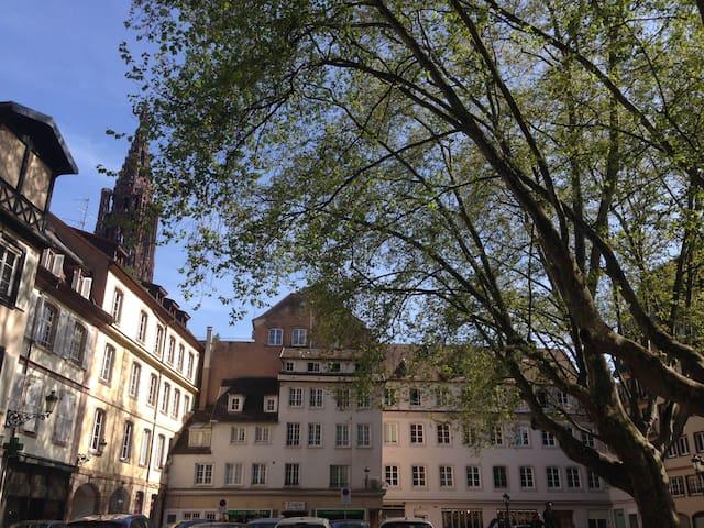 Studio Cathédrale Carré d'Or - Estrasburgo - Apartamento