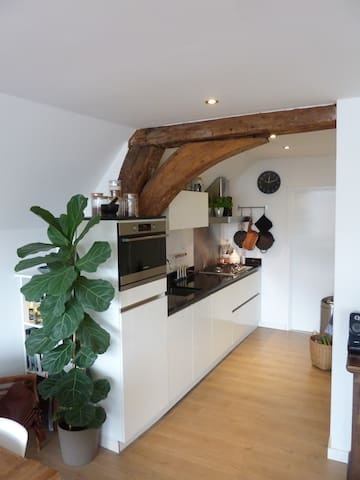 Spacious 2-room apartment in historic canal house - Utrecht - Apartament