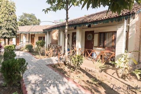 Eden jungle resort Chitwan - Cottage room