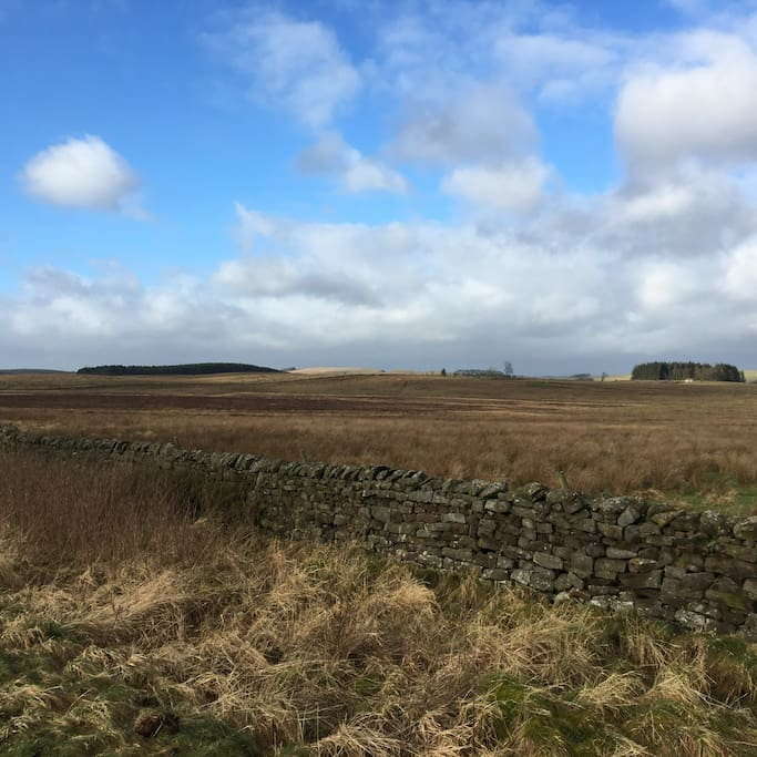 A short walk away from Hadrian Wall Country