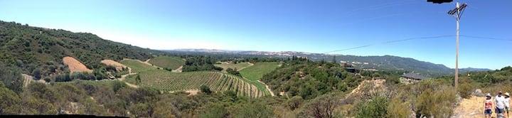 Peaceful Vineyard View Studio