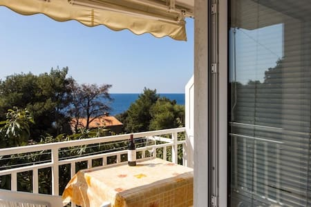 Apartments Villa Ana Dingač - One Bedroom Apartment with Balcony and Sea View (Apartment 1)