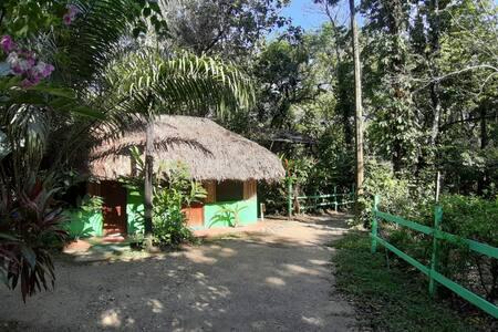 Cabaña Estándar con 2 Camas Individuales