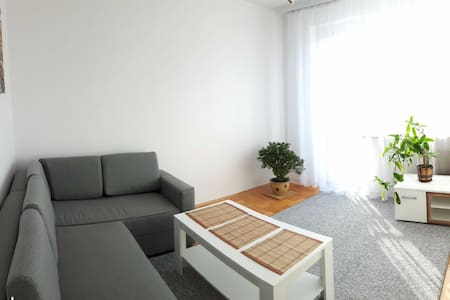 Luxury apartment in a city convenient location - Mielec