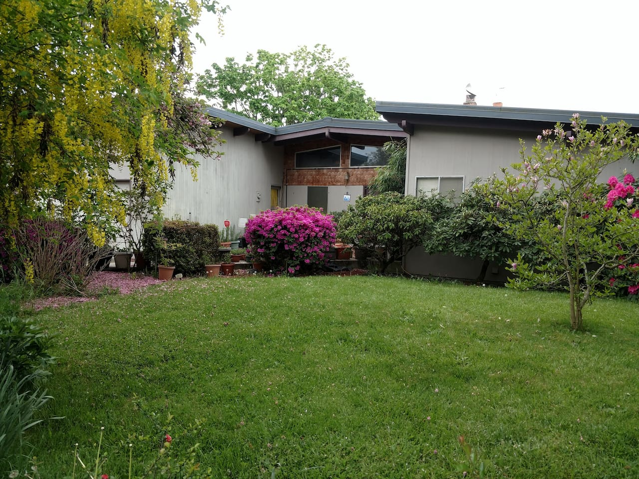 Front of the house with yard