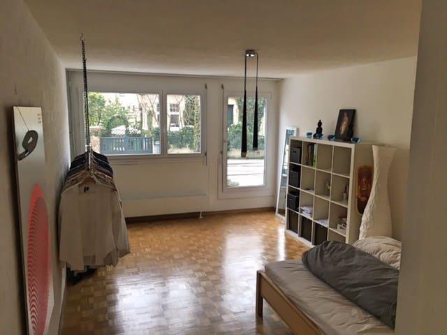 Schöne und helle Wohnung in der Stadt Zürich - Zürich - Huoneisto