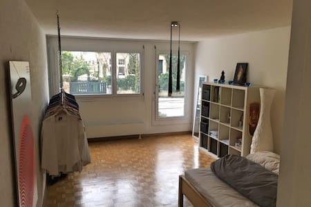 Schöne und helle Wohnung in der Stadt Zürich - Zürich - Apartment